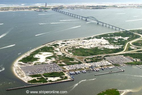 Striperonline for Captree state park fishing